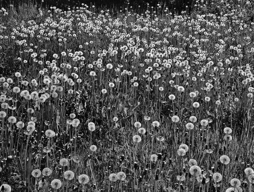 marco-bianchi-fotografo-slider-BAR09_13_30MB