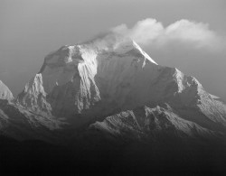 Dhaulagiri, Alba con Nuvola, Himalaya, Nepal INFO