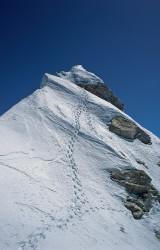 The summit of Manaslu (8.163 m), Nepal