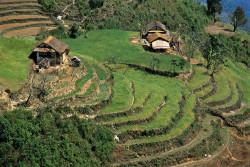 Nepali homes in the Makalu area