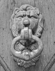 Battente a Testa di Leone, Castello di Lourmarin, Provenza, Francia INFO