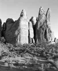 Guglie, Arches National Park, Utah, U.S.A. INFO