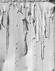 Tessuto Strappato, Bodie, California, U.S.A. INFO