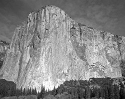 El Capitan, Mattino, Orizzontale, Yosemite National Park, California, U.S.A. INFO
