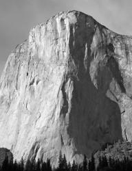 El Capitan, Pomeriggio, Yosemite National Park, California, U.S.A. INFO