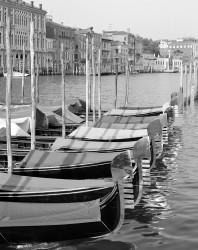 Gondole sul Canal Grande, Venezia, Italia INFO