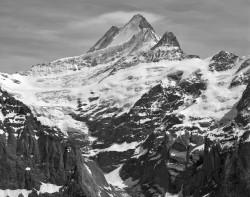 Schreckhorn e Grindelwaldgletscher, Svizzera INFO
